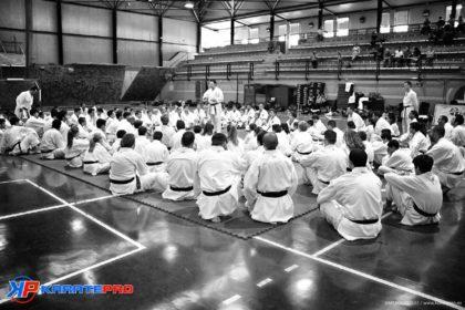 Calendario bloque común 2015 técnicos karate I-II-III