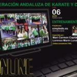 Entreno Katas Online Fak